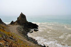 wild kalifornisk kust Royaltyfri Foto