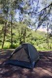 Wild kamp royalty-vrije stock foto
