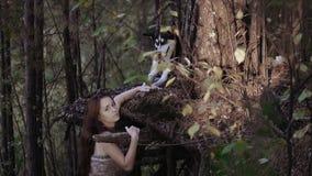 Wild-kijkt meisje status onder de boom die een wolf houden is poot stock videobeelden