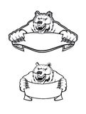 Wild kodiak bear. As a mascot isolated on white background Stock Photography