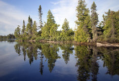 Wild lake Royalty Free Stock Photos
