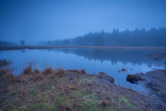 Wild lake in dense autumn fog Royalty Free Stock Photo
