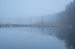 Wild lake in forest and dense fog Royalty Free Stock Photos