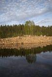 Wild lake Stock Images