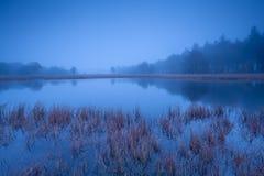 Wild lake in misty dusk Royalty Free Stock Photography