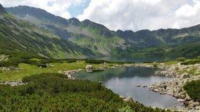 Wild lake Stock Image