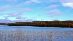 Wild lake panorama in autumn stock footage