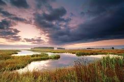 Wild lake at sunrise Stock Photo