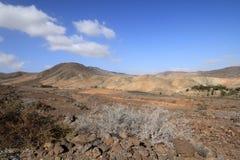 Wild landscape (Fuerteventura - Spain) Stock Photos