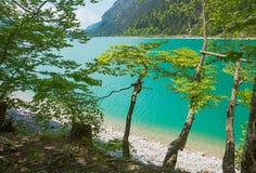Wild landscape lake sylvenstein Stock Images