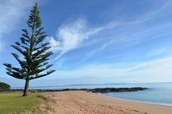 Wild landscape New Zealand Royalty Free Stock Photos