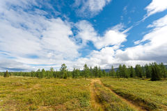 Wild landscape in Ural Mountains. Royalty Free Stock Image