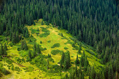 Wild landscapes of the planet Stock Image