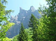 Wild landschap Royalty-vrije Stock Foto