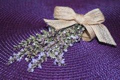wild lavendel Royaltyfri Fotografi