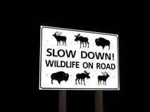 Wild lebende Tiere auf Verkehrsschild Stockfoto