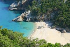 Wild lebende Tiere in Sardinien Lizenzfreie Stockbilder