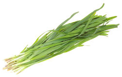 Wild leek Stock Photography