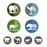 Wild life icons. Wild animal flat icon collection royalty free stock images