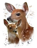 Wild life: Sika deer. Watercolor painting royalty free illustration