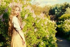 Wild lilac Stock Photo