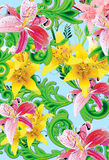 Wild lilly_aqua. Exotic tropical lilly garden with scroll fern leaf plants Stock Photos