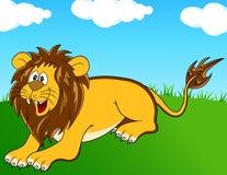 wild lion Royaltyfri Fotografi