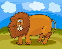 Wild lion cartoon illustration Stock Photos