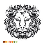 Wild lion coloring page Stock Photography