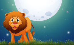 Wild lion in the field at night. Illustration Stock Photo