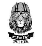 Wild lion Wild cat Be wild and free T-shirt emblem, template Biker, motorcycle design Hand drawn illustration Stock Image