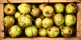 Pears in wooden box, flat lay, top view, background texture stock image