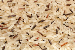 Wild and long polished rice Stock Photography