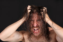 Wild man pulling long hair. Portrait of wild bare chested madman pulling long straggly hair, black background Royalty Free Stock Photos