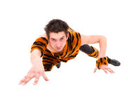 Wild man wearing a tiger skin crawls Royalty Free Stock Image