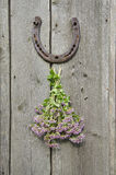 Wild marjoram and horseshoe on old wall Royalty Free Stock Photos