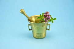 Wild marjoram oregano herbs in old brass mortar Royalty Free Stock Images