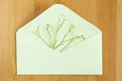 Wild meadow flowers with open paper envelop on wooden background. Flat lay. Top view. Royalty Free Stock Photography