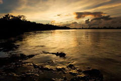 Wild Miami Sunset. Stunning sunset over the Miami skyline and mangrove forest Stock Image
