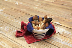 Wild Morel Mushrooms in a Crock with Towels Stock Image