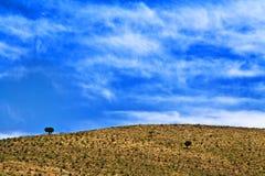 Wild morrocan scenery Stock Photo