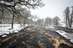 Wild Morrum river in snowy winter royalty free stock photography