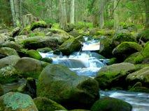 Free Wild Mountain Brook Stock Photos - 3710703