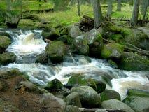 Free Wild Mountain Brook Stock Photography - 3711032
