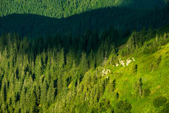 Wild mountain landscape Royalty Free Stock Photography