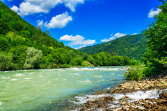 Wild mountain river on a clear summer day Royalty Free Stock Photography