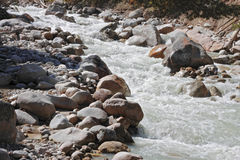 Wild mountain river flowing in the canyon Royalty Free Stock Photo
