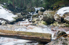 Wild mountain river, rocky shore in winter.  Stock Photography