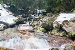 Wild mountain river, rocky shore in winter.  Royalty Free Stock Photos