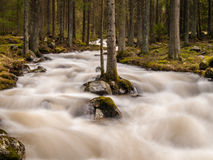 Wild mountain river in Slovakia Stock Photos